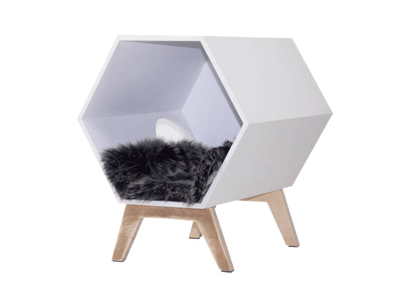 balance buddy b petsinboxes. Black Bedroom Furniture Sets. Home Design Ideas